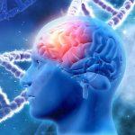 Статья о применение Эхо - Энцефалографии